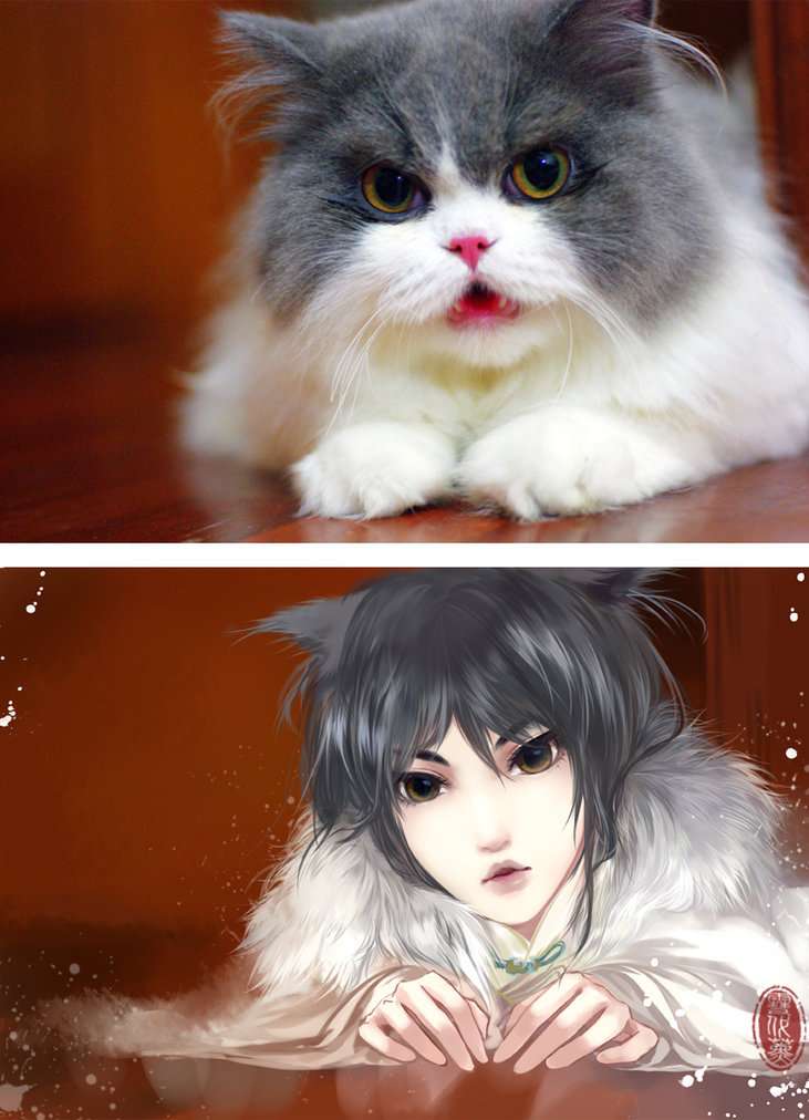 Koty I Ich Kobiece Odpowiedniki W Stylu Anime Animeholik Newsy
