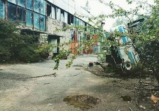 Чорнобиль поглинає невидимий вбивця, і це не радіація - як виглядає зона після десятиліть відчуження (фото)
