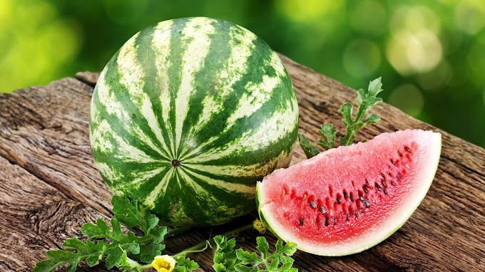 Watermelon Image | Free Download