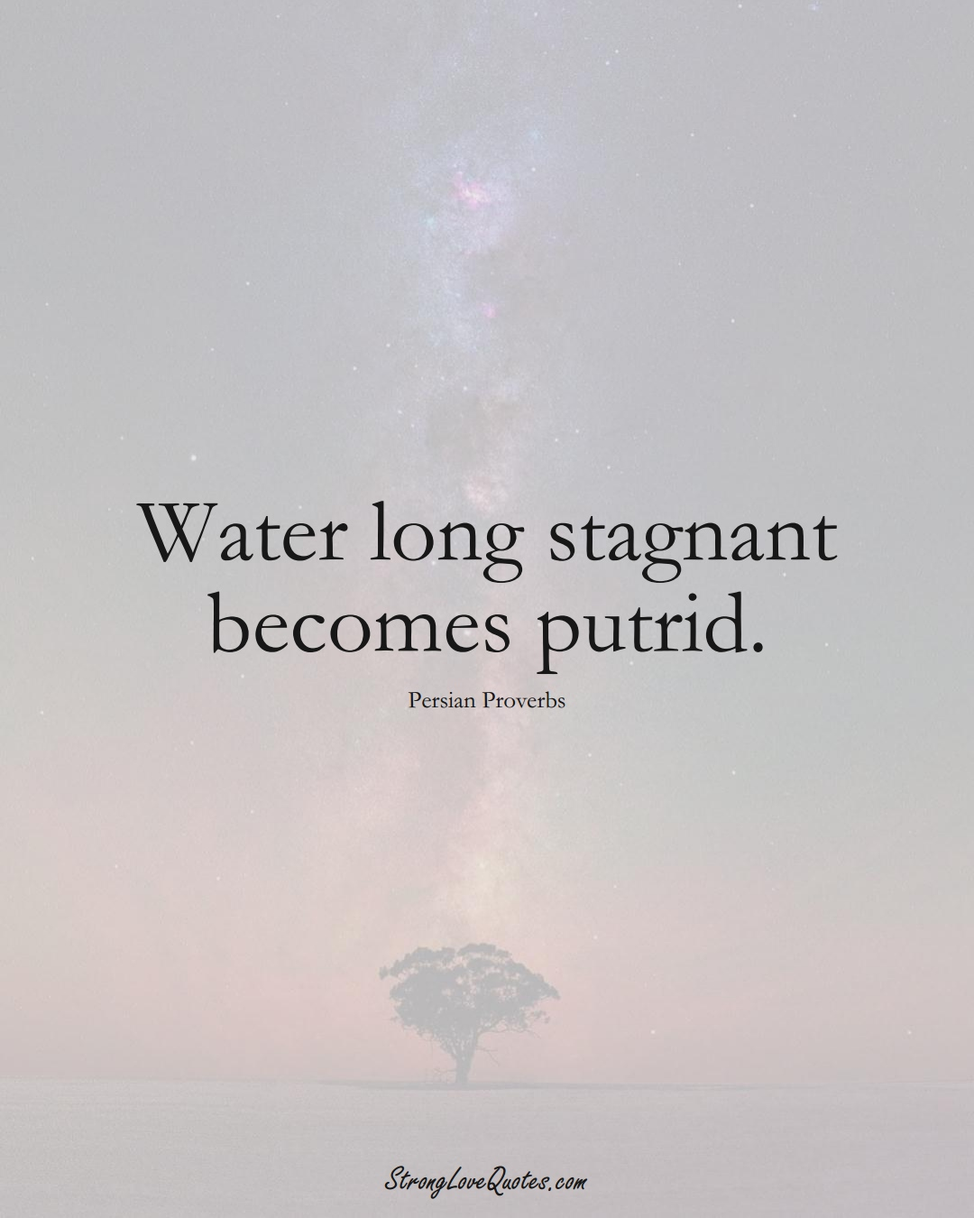 Water long stagnant becomes putrid. (Persian Sayings);  #aVarietyofCulturesSayings