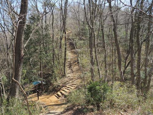 両崖山に近づく山道