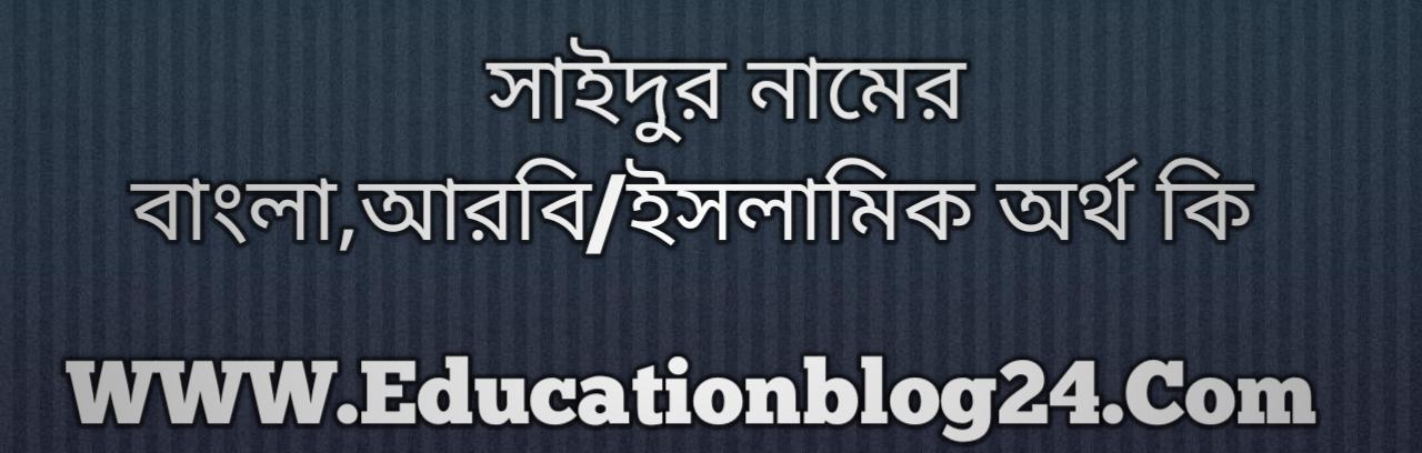 Saidur name meaning in Bengali, সাইদুর নামের অর্থ কি, সাইদুর নামের বাংলা অর্থ কি, সাইদুর নামের ইসলামিক অর্থ কি, সাইদুর কি ইসলামিক /আরবি নাম