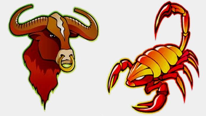 Compatibilità tra Toro e Scorpione