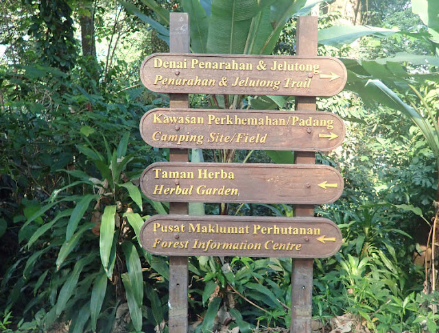 fasilitas di kl forest eco park malaysia