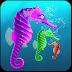 Seahorse Family Simulator