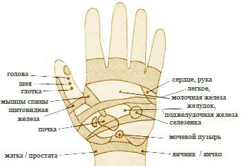 показывают, точка чингисхана на руке фото игра