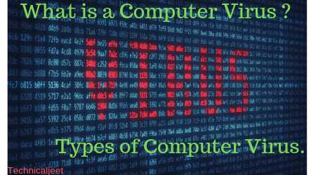 What is a computer virus | Type of computer virus | Computer