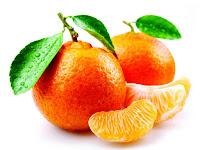 tangerine - la mandarina - Citrus tangerina