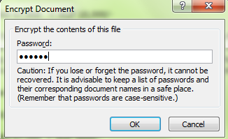 Make Password Protected Document In MS Word 2007