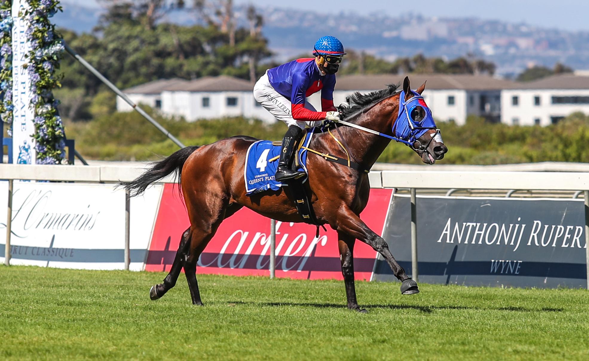 Cirillo - Cape Town Met Horse Profile