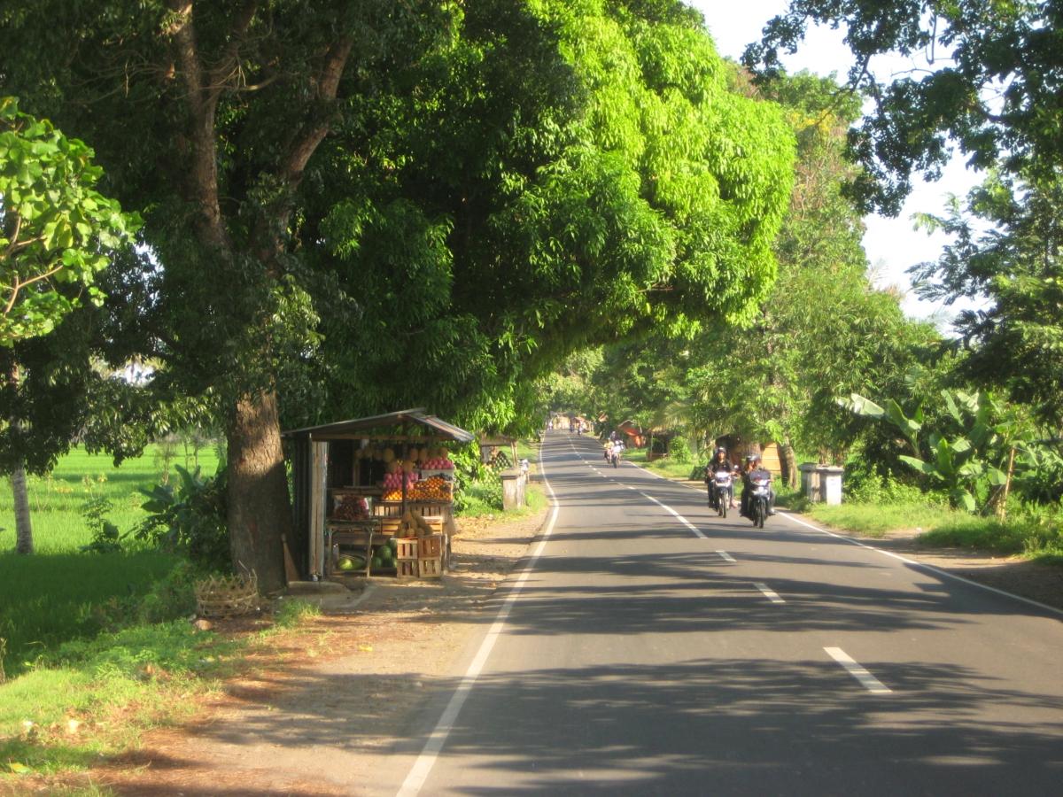 롬복 남쪽으로 향하는 도로