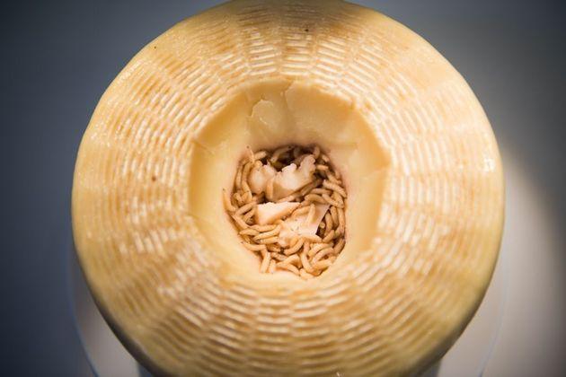 Το πιο επικίνδυνο τυρί του κόσμου