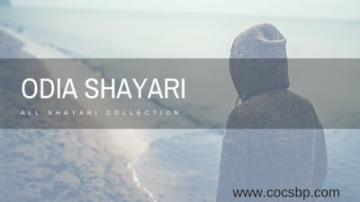 Best Odia Shayari Collection