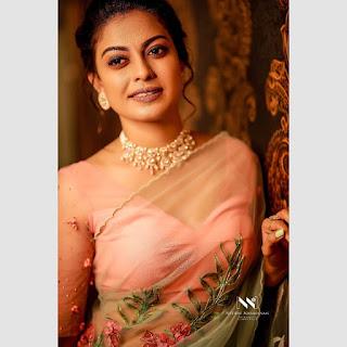 Actress Anusree Nair Saree Photos Stills Gallery