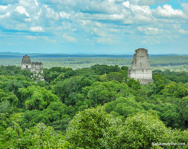 A cidade maia de Tikal vista do topo do Templo IV