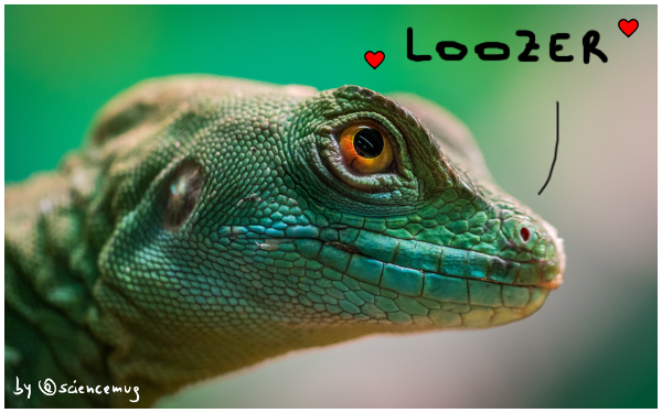 lizard Valentine's Day by@sciencemug