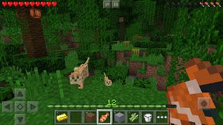 Minecraft v1.2.20.1 Mod