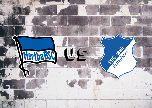 Hertha BSC vs Hoffenheim  Resumen