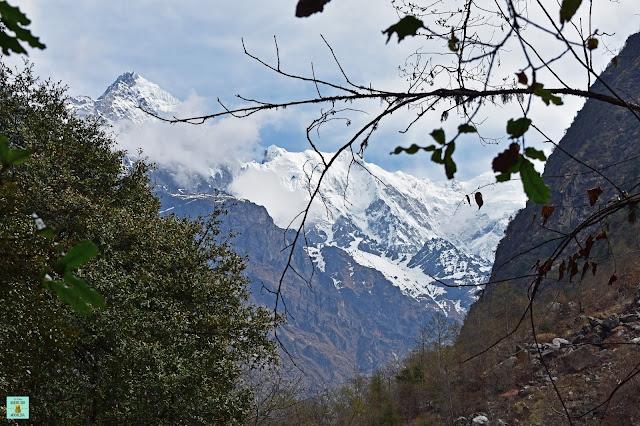 Trekking Valle del Langtang, Nepal