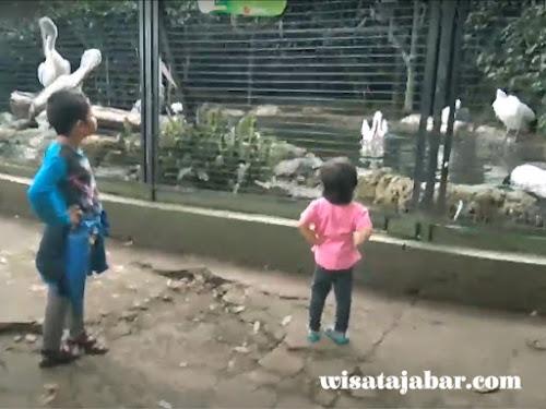 annasya nandya di kebun binatang bandung