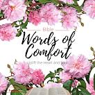 Bible Words of Comfort