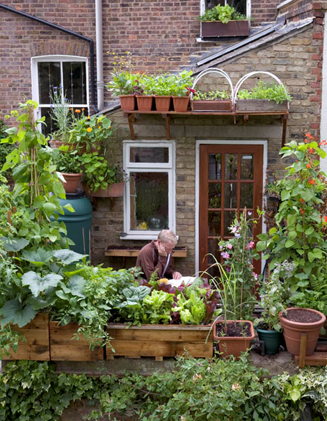 Anderson cottage: tuin ideeen   groen dak en zonnepanelen.