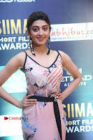 Actress Pranitha Subhash Pos in Short Dress at SIIMA Short Film Awards 2017 .COM 0001.JPG