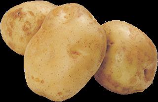 https://imgbin.com/png/Xh0MtAZV/russet-burbank-yukon-gold-potato-vegetable-png