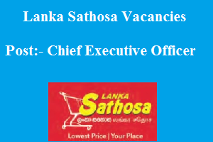 Chief Executive Officer