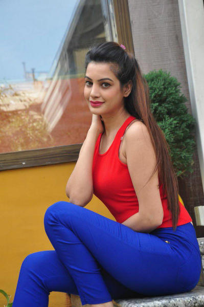 South Indian Actress Deeksha Panth Hot Photo Gallery