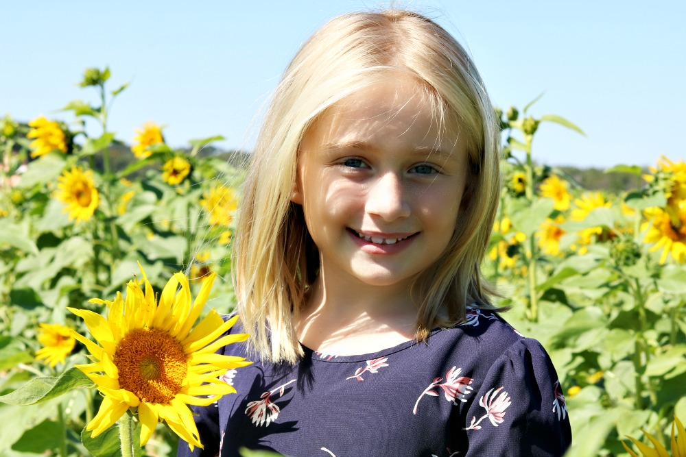 Jemma's Tales: Alpin Sunflower Farms