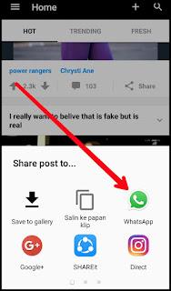 Video GIF Lucu Untuk WhatsApp