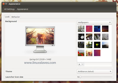 Add image to Appearance Ubuntu System