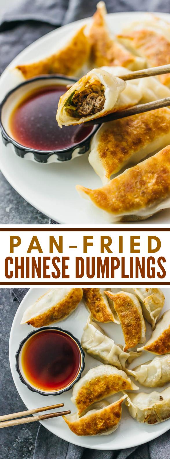 PAN FRIED CHINESE DUMPLINGS RECIPE #dinner #easytocook