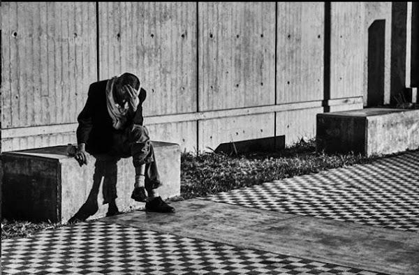Trabajar o Morir | por Zygmunt Bauman