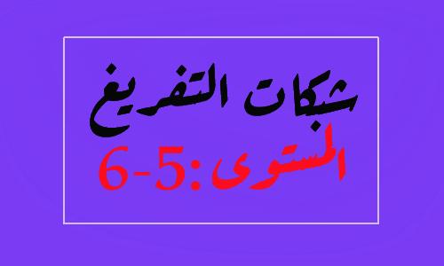 شبكة تفريغ نتائج التقويم التشخيصي لمادة اللغة العربية المستوى السادس والخامس
