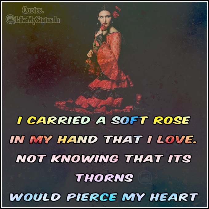 I carried a soft rose | Sad Love Quote