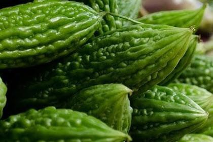 10 Manfaat buah pare bagi kesehatan