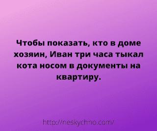 ryayxjzv.png