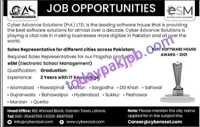 cyber-advance-solutions-jobs-2021.html