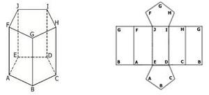 prisma segilima beraturan dan jaring-jaringnya