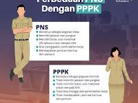 Kelebihan Kekurangan PPPK & Dampaknya Bagi Pelamar CPNS 2021-2022