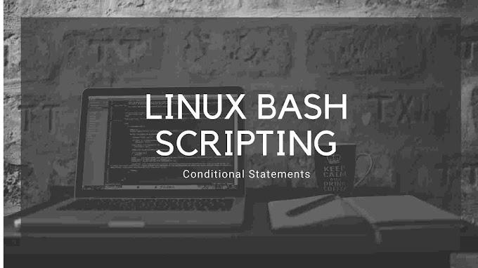 Bash if/else Statement - Shell Scripting