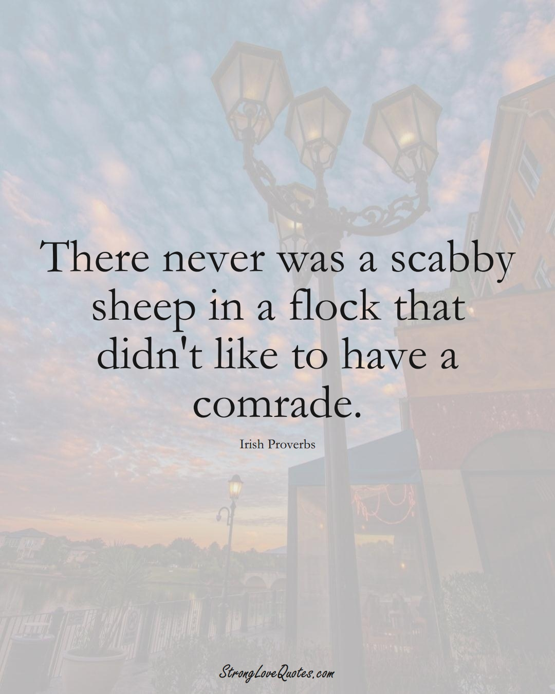 There never was a scabby sheep in a flock that didn't like to have a comrade. (Irish Sayings);  #EuropeanSayings