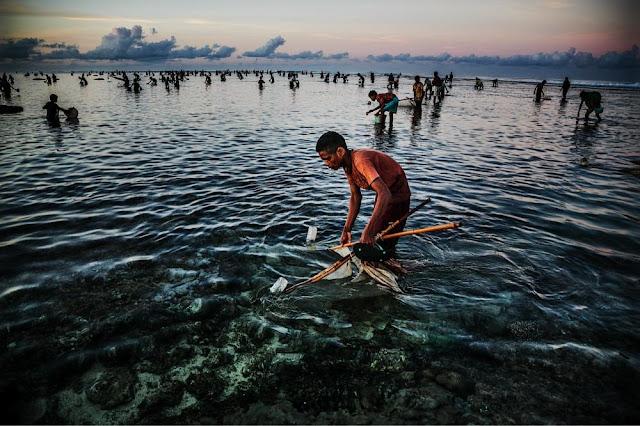 Bau Nyale - Budaya tradisi adat Lombok NTB.jpg