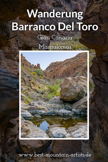 Wanderung zu den Wasserfällen im Barranco del Toro | San Agustín/Maspalomas | Wandern auf Gran Canaria 20