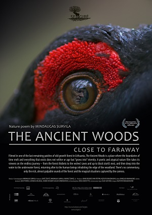 The Ancient Woods Movie Review