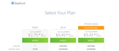 اختيار خطة الدفع في موقع Bluehost