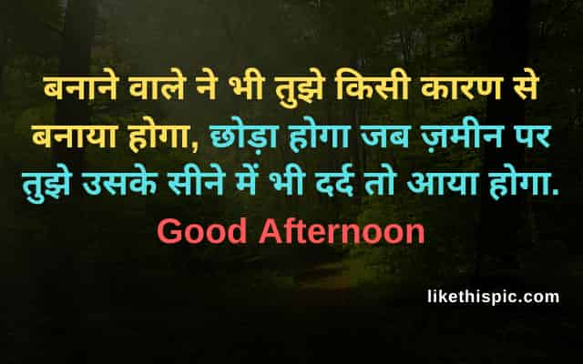 good afternoon image with love shayari
