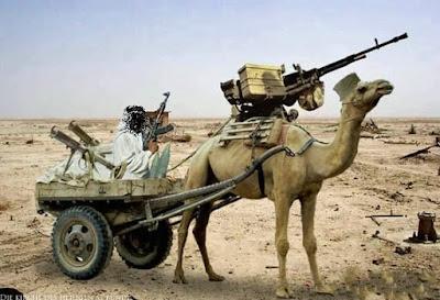 Lustige Soldaten Bilder - Bewaffnetes Kamel - Tierische Geheimwaffen der Armee